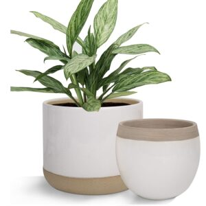 Weiße Keramik-Blumentöpfe