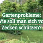 Gartenprobleme_ Wie soll man sich vor Zecken schützen_