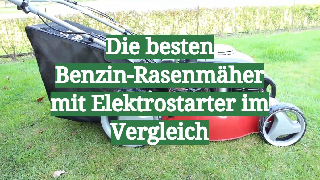 Die besten Benzin-Rasenmäher mit Elektrostarter im Vergleich