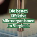 Die besten Effektive Mikroorganismen im Vergleich
