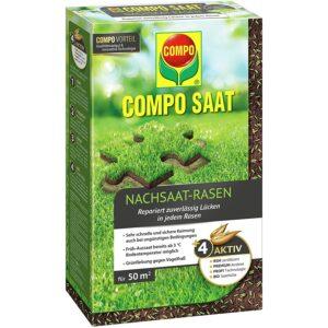 Compo SAAT Nachsaat-Rasen, Spezielle Nachsaat-Mischung mit wirkaktivem Keimbeschleuniger, 1 kg, 50 m²