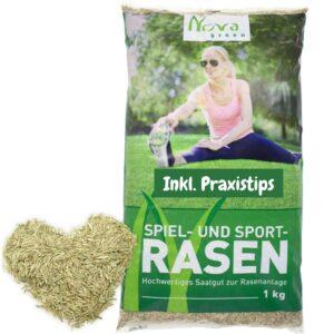 Premium lawn seeds quick germinating