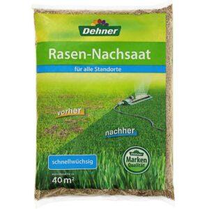 Dehner Rasen-Nachsaat, 1 kg, für ca. 40 qm